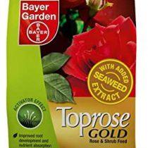 Toprose Gold