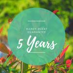 5 Year Plant Guarantee