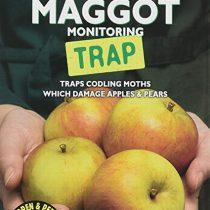 GS Apple Maggot Monitoring Trap