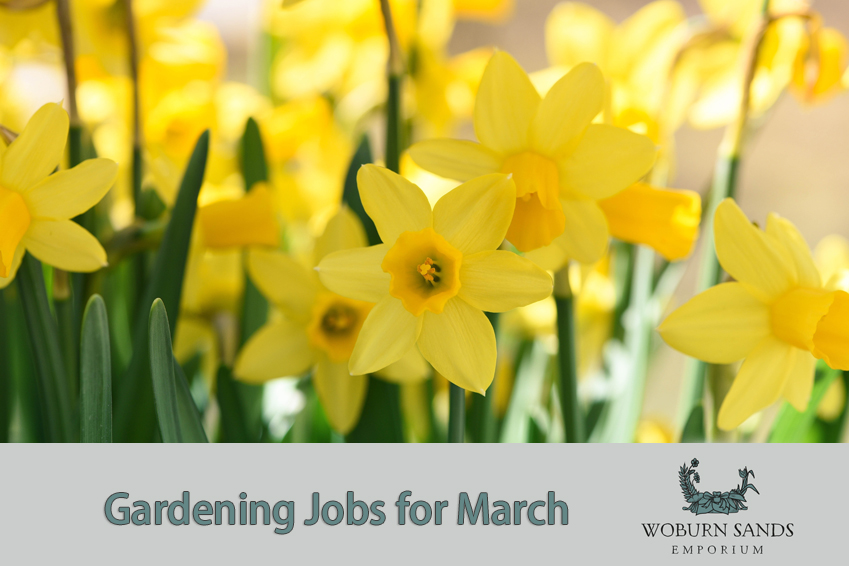 march gardening job